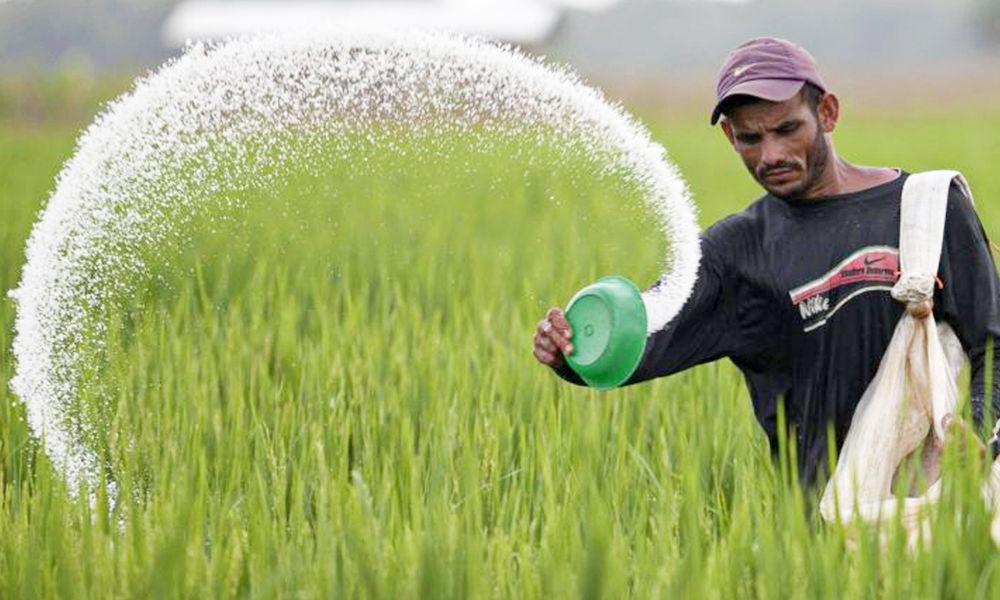 مردی در حال پاشیدن کود شیمیایی - مضرات کود شیمیایی