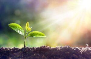 چه عواملی موجب از بین رفتن خاک می شود